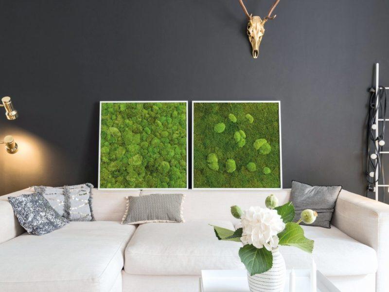 Standard: Wald und-/ Kugelmoos 80x80